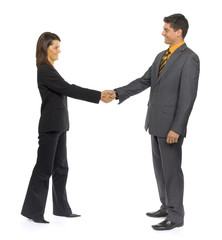 handshake of two business people