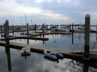 harbor and boats