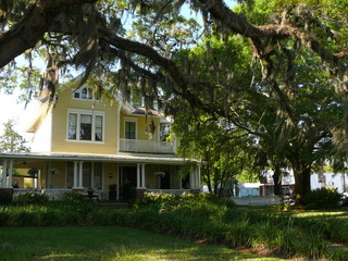 yellow house with live oak tree