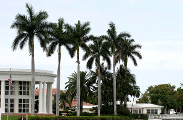 five palms and a mansion