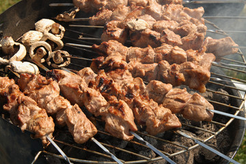 meat kebabs shashlyk on a barbecue