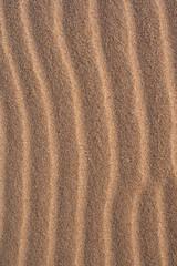 ondas de arena en la playa de cádiz