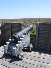 cannon at old fort