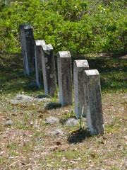 line of gravestones