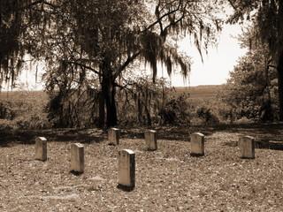 old fort graveyard