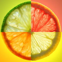 citrus slice - fototapety na wymiar