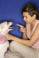 Woman reprimanding  white dog.