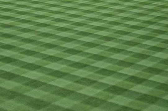 major league baseball field grass