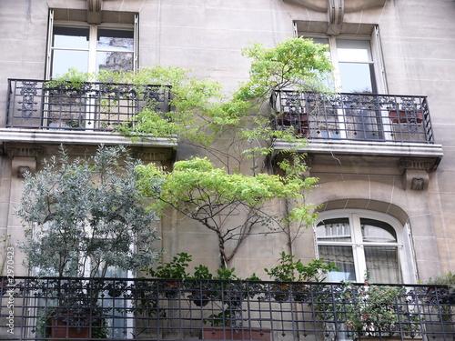 un arbre au balcon. Black Bedroom Furniture Sets. Home Design Ideas