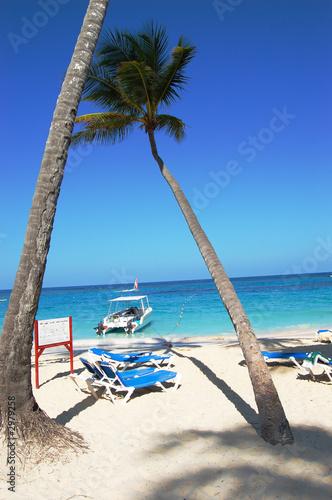 Palmenstrand Karibik Stockfotos Und Lizenzfreie Bilder Auf Fotolia