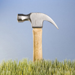 hammer with wooden handle placed behind grass.