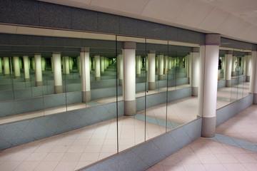 mirors reflectios