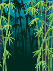 Poster Bambou bamboo forest