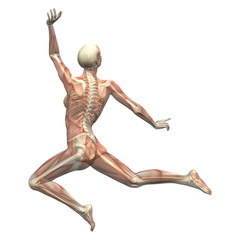 anatomy in motion - woman leaping 2