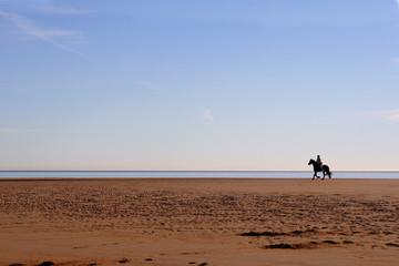 Fototapete - horse rider