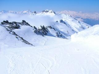 alpine 25