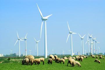 windkraftanlagen an der küste