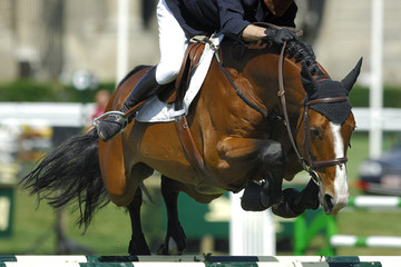 jumping passion