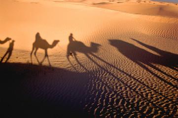 Photo sur Toile Desert de sable shadow of karavan