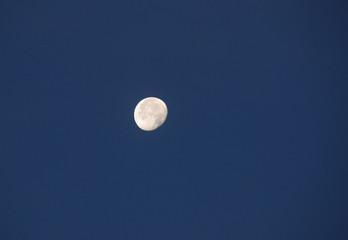 moon in the skies