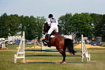 cheval equitation
