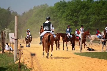 compétiton equestre