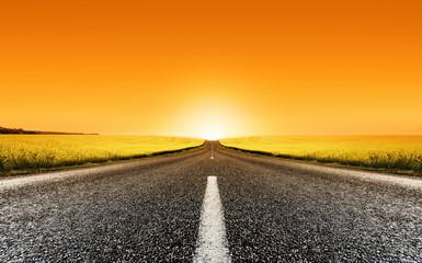 canola road sunset