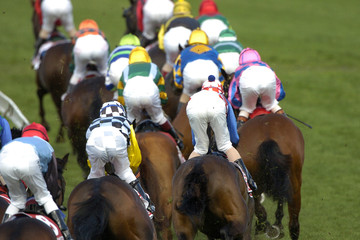 horseracing 025