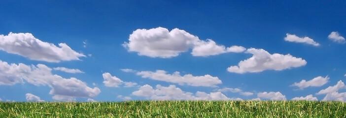 grass, sky and clouds panorama