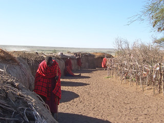 massai hut village, serengeti park, tanzania Wall mural