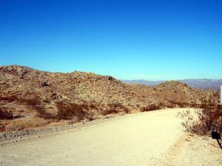 sunny desert road