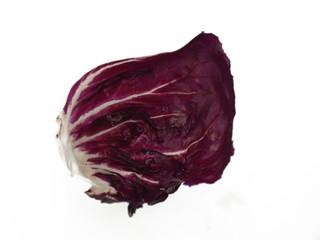 radicchio salat blatt
