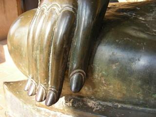 bouddha hand - thailand - asia
