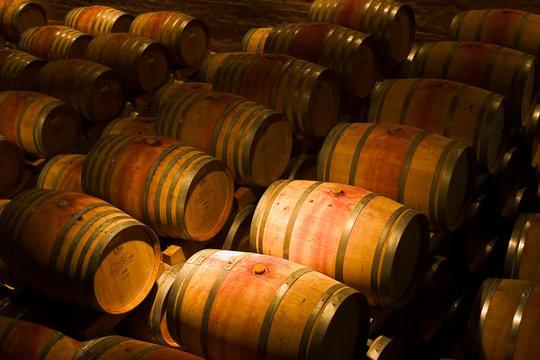 wine barrels at groot constantia