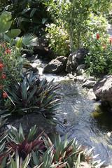 cascade antillaise