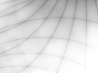 linee delicate