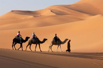 Fotorolgordijn Kameel camel caravan in the sahara desert