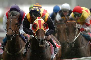 horse racing winning 02