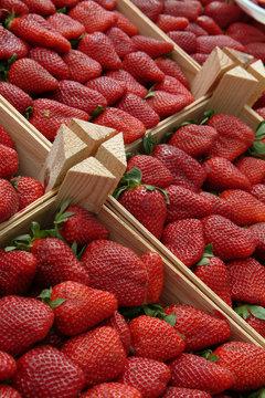 cageots de fraises