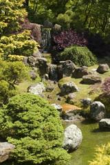 the japanese tea garden fall