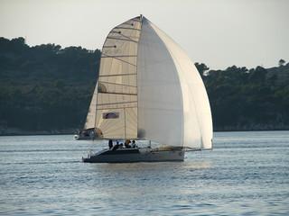 racing yacht sailing