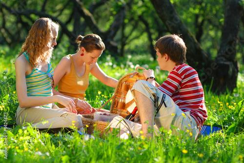 Развлечение молодых на природе  364126