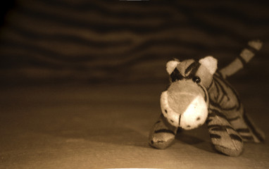 la piccola tigre