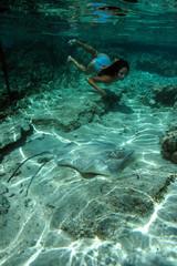 touriste nageant avec une raie armée