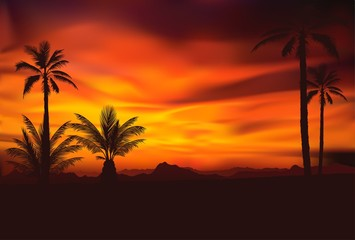 tropical sunset 4