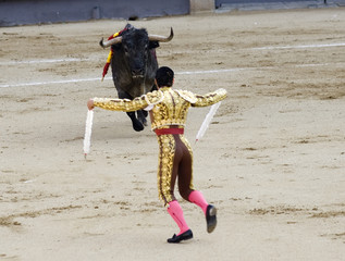 banderillero in bullfight