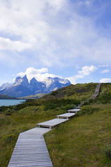 a scenic walk in patagonia