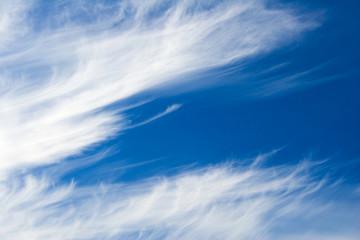 sky feathers-2