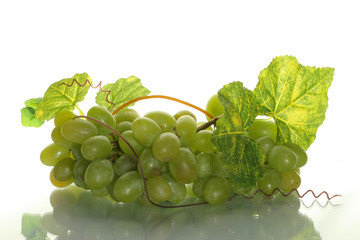 green grape cluster with leaves on a white backgro