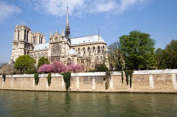 Notre Dame across the Seine River, Paris, France